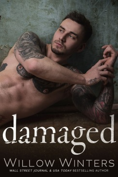 1e8f2-damaged2bebook2bcover